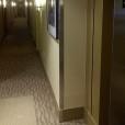 8 ft Stainless Corner Guards Installded