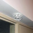 Two-piece Universal Sprinkler Head Guard