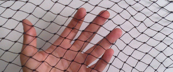 How to Install Bird Netting – BC Site Service